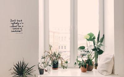 Begin jouw urban jungle!